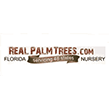 Shop RealPalmTrees